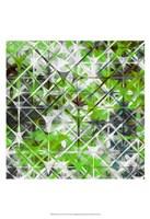 "Starscreen III by James Burghardt - 13"" x 19"""