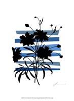 Color Shade III Fine Art Print