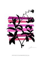 Color Shade V Fine Art Print