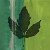 Silver Leaf Tile II by James Burghardt - various sizes