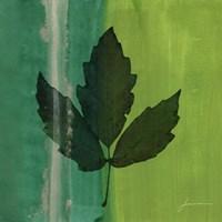 Silver Leaf Tile II by James Burghardt - various sizes