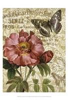 Memories of Paris IV Fine Art Print