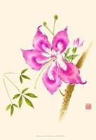 """13"""" x 19"""" Hibiscus Prints"""