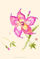 """13"""" x 19"""" Pink Art"""