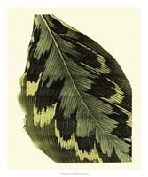 "Grandiose Leaves I by Vision Studio - 20"" x 24"""