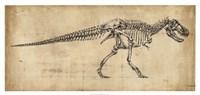 Tyrannosaurus Rex Study Fine Art Print