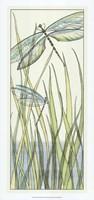 """Gossamer Dragonflies I by Chariklia Zarris - 13"""" x 28"""""""