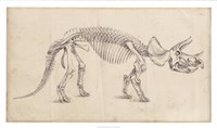 """Dinosaur Study II by Ethan Harper - 34"""" x 20"""""""