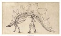 Dinosaur Study III Framed Print