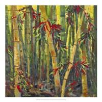 Bamboo Grove I Framed Print