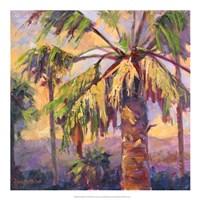 """Desert Repose VI by Nanette Oleson - 20"""" x 20"""""""