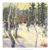 Four Seasons Aspens IV Fine Art Print