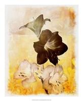 """Brocade Garden II by James Burghardt - 18"""" x 22"""""""