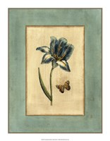 "Crackled Spa Blue Tulip I by Vision Studio - 14"" x 18"""