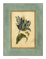 "Crackled Spa Blue Tulip II by Vision Studio - 14"" x 18"""