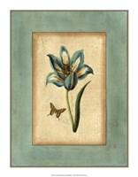Crackled Spa Blue Tulip III Fine Art Print