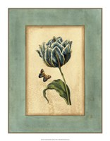 "Crackled Spa Blue Tulip IV by Vision Studio - 14"" x 18"""
