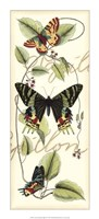 "Butterfly Flight II by Vision Studio - 10"" x 22"""