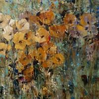 Amber Poppy Field II Fine Art Print