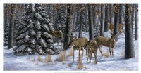 Winter Gathering Fine Art Print