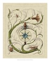 "Decorative Flourish III by Vision Studio - 18"" x 22"""