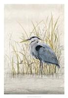 "Heron Sanctuary II by Timothy O'Toole - 18"" x 26"""