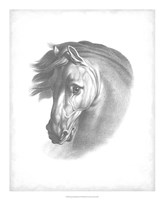 "Equestrian Blueprint I by Vision Studio - 18"" x 22"""