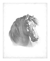 "Equestrian Blueprint II by Vision Studio - 18"" x 22"""