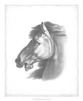 "Equestrian Blueprint III by Vision Studio - 18"" x 22"""
