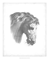"Equestrian Blueprint IV by Vision Studio - 18"" x 22"""