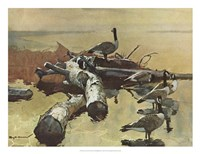 Geese on the Great Flyway Fine Art Print