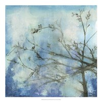 Moonlit Branches II Framed Print