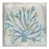 """Watercolor Coral I by Megan Meagher - 20"""" x 20"""""""