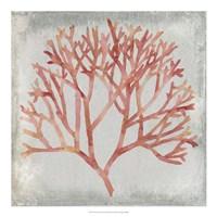 Watercolor Coral IV Fine Art Print