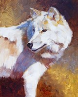 White Wolf by Julie Chapman - various sizes