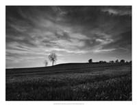 "Black & White Sunset by Martin Henson - 26"" x 20"""