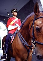 Malaysia, Kuala Lumpur: a mounted guard stands in front of the Royal Palace Fine Art Print