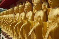 Taiwan, Foukuangshan Temple, Standing gold-colored Buddha statues at a Buddhist shrine Fine Art Print