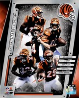 Cincinnati Bengals 2014 Team Composite Framed Print