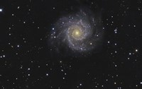 Messier 74, A Spiral Galaxy in the Constellation Pisces Fine Art Print