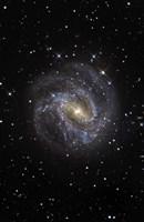 The Southern Pinwheel Galaxy Fine Art Print