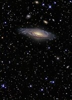 NGC 7331, A Spiral Galaxy in the Constellation Pegasus Fine Art Print