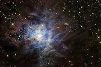 The Iris Nebula Fine Art Print