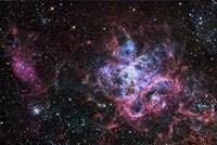 The Tarantula Nebula Fine Art Print