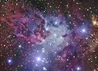 The Fox Fur Nebula Fine Art Print