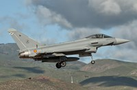 Eurofighter Typhoon of the Spanish Air Force Fine Art Print