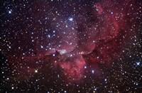 Emission Nebula in the Constellation Cepheus (NGC 7380) Fine Art Print