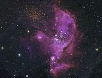 Open Cluster and Nebula Complex in the Small Magellanic Cloud Fine Art Print