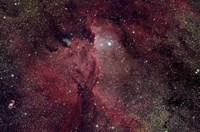 Emission Nebula in Ara (NGC 6188) Fine Art Print