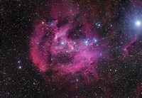 The Running Chicken Nebula Fine Art Print